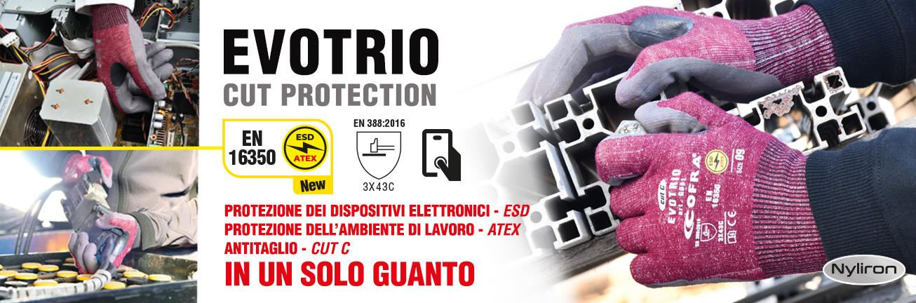 banner-home-EVOTRIO-IT